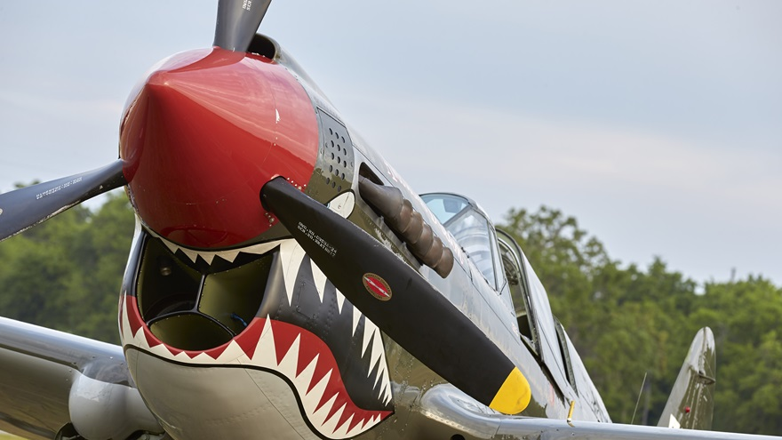 Warbird Adventures operates a TP-40 Warhawk. Photo by Mike Fizer.