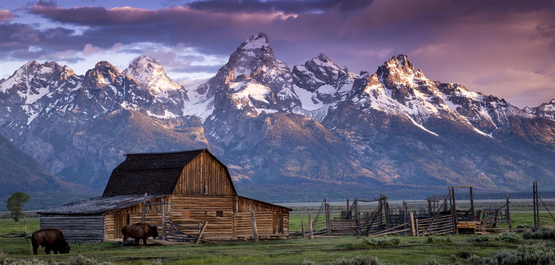 The Grand Tetons rise steeply above Jackson Hole and the John Moulton Barn. Photo by Gord McKenna via Flickr.