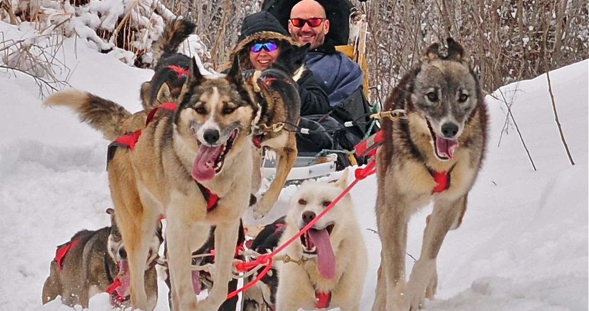 Far from civilization, you can take a dogsled ride with the folks at Gunflint Lodge. Photo by Debbie Decker.