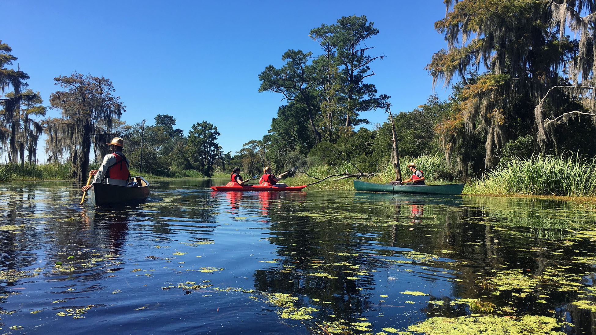 One of the best ways to explore Louisiana's Northshore is kayaking through area bayous. Photo by MeLinda Schnyder.